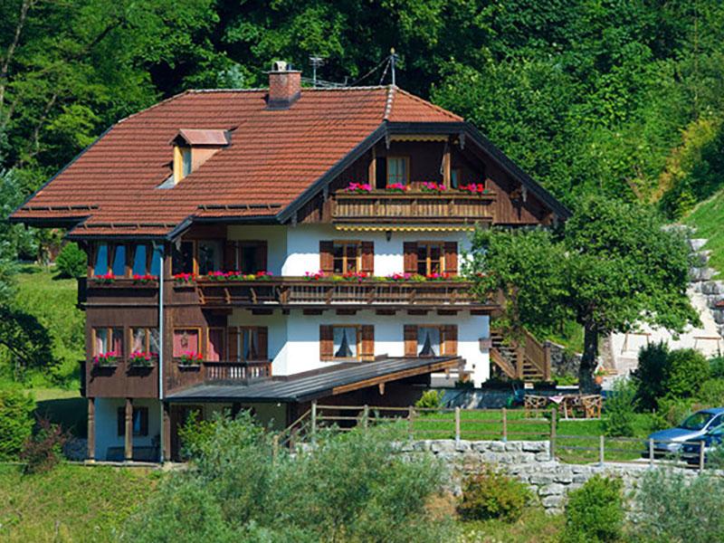 Ferienwohnung Haus Vogelrast im Sommer