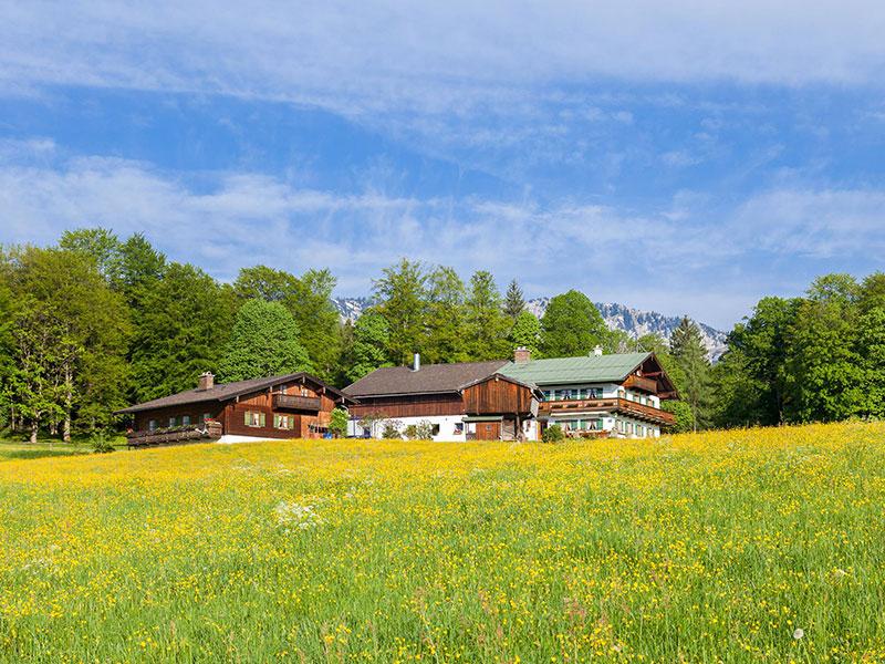 Ferienwohnung & Pension Voglerlehen im Sommer Bischofswiesen-Loipl bei Berchtesgaden