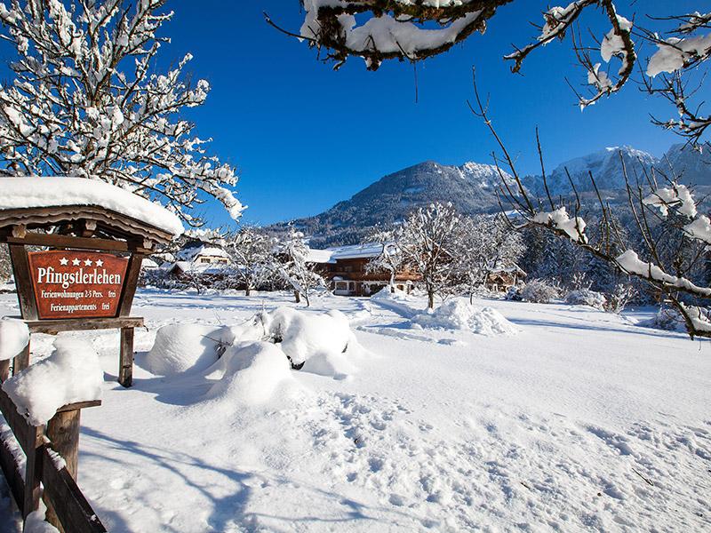Gästehaus Ferienwohnungen-Appartments Pfingstlerlehen im Winter