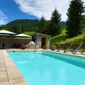 Pool im Ferienparadies Alpenglühn