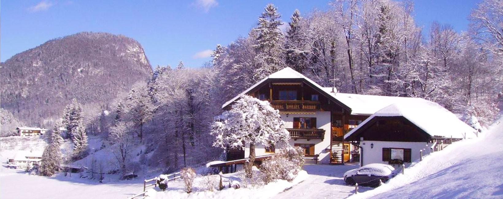 Ferienwohnungen Haus Vogelrast im Winter