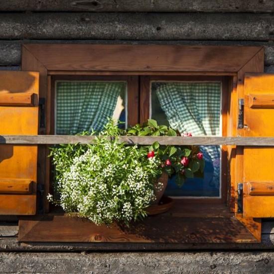 Gästehaus Egglerlehen Schönau - Sommerblumen