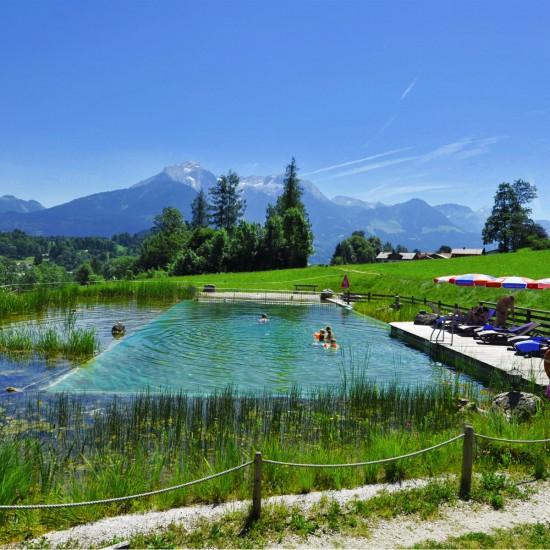 Naturhotel Reissenlehen Teich mit Bergblick