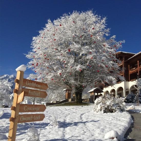 Hotel Rehlegg Außenansicht Winter