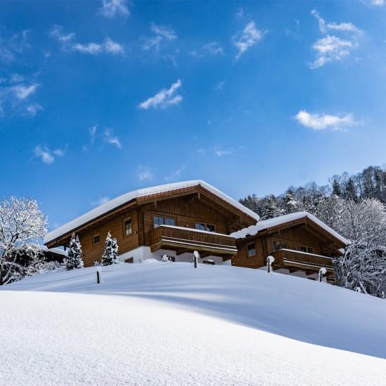 Chalets Lampllehen im Winter