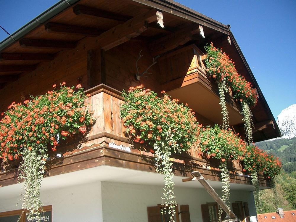 Sommer im Haus Hinterbrandner in Schönau am Königssee