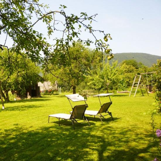 Gästehaus Rennerlehen Königssee Garten im Sommer