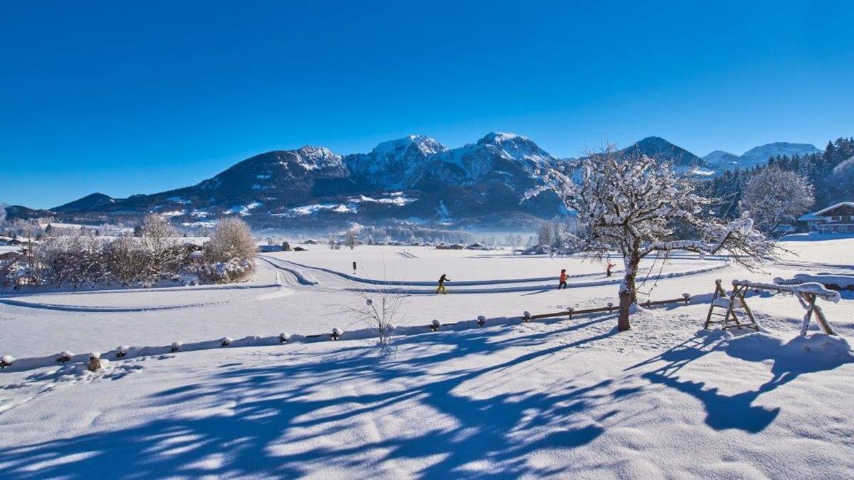 Ferienwohnungen Grünsteineck winterlicher Ausblick in die Berge