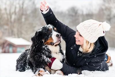 Urlaub mit Hund im Berchtesgadener Land