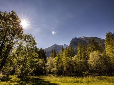 Hotel-Gasthof Wörndlhof - Sommerurlaub in der Natur