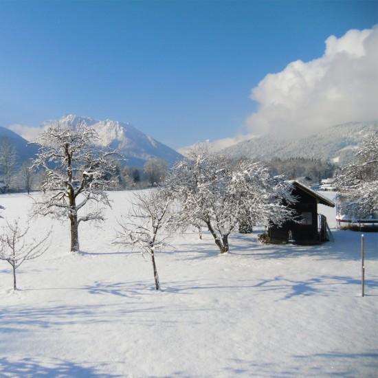 Gästehaus Rennerlehen Aussicht im Winter