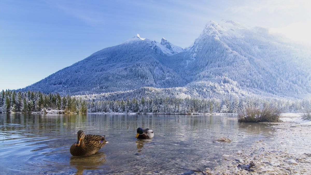 Der zauberhafte Hintersee im Winter